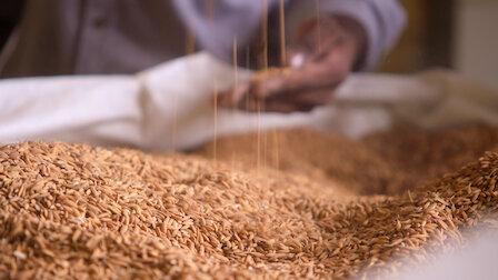 Guarda Il regno del riso. Episodio 2della Stagione1.